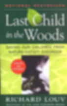 Last Child in the Woods.jpg