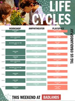 Lifecyclews Weekend Programming- Poster