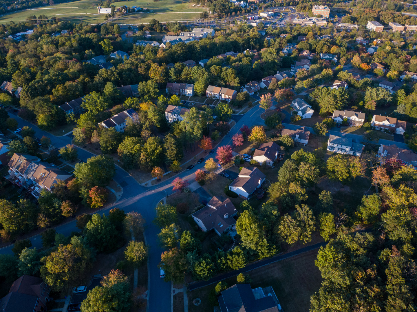 Aerial view of fall foliage in Rockville