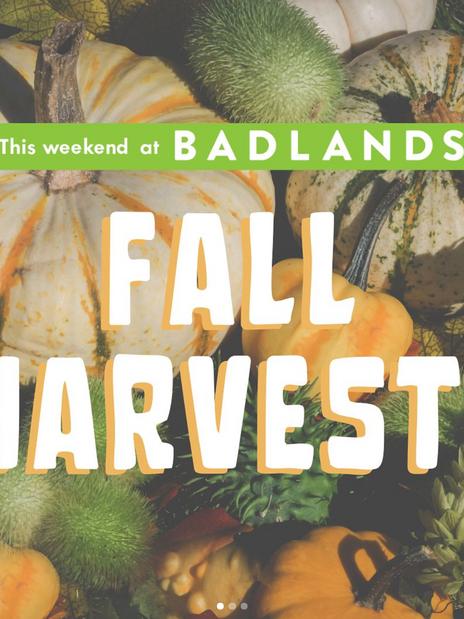 Fall Harvest Programming- Social Media