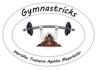 Gymnastricks Logo.jpg