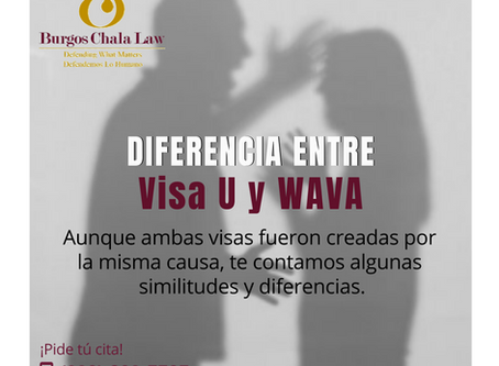 DIFERENCIA ENTRE Visa U y WAVA