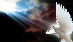 Holy-Spirit-dove-321x229.jpg