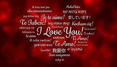 love-615307_960_720.jpg