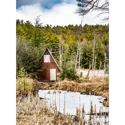 Secluded in the ADK | 16x20 Print
