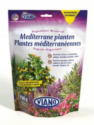 Mediterrane planten 750g