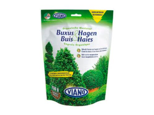 Buxus & Hagen 750g