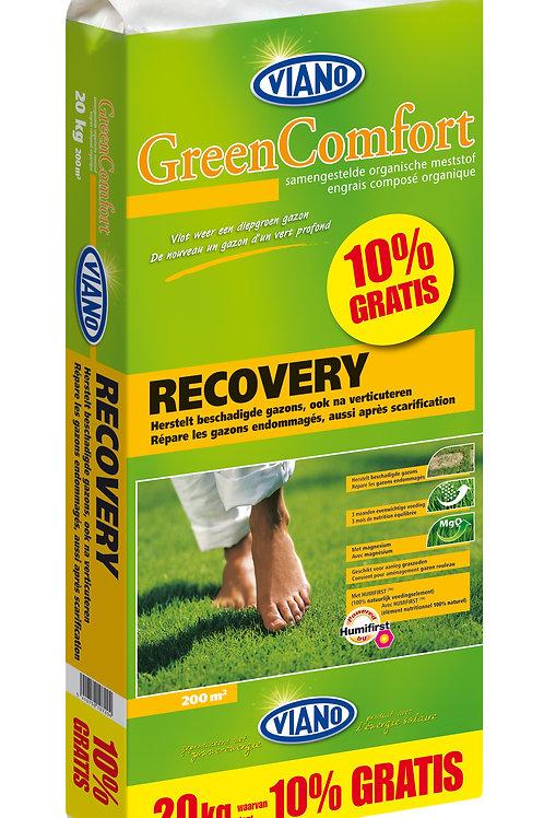 Green Comfort Recovery (gazon) - 20kg + 10% gratis