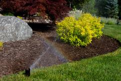 Ricci's Landscape Management, INC