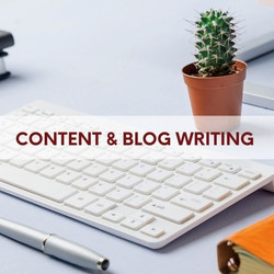 Skribu Digital Content Agency   Blog and Content Writing   Services