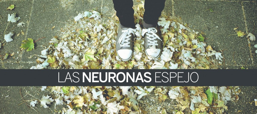 Novela Las neuronas espejo