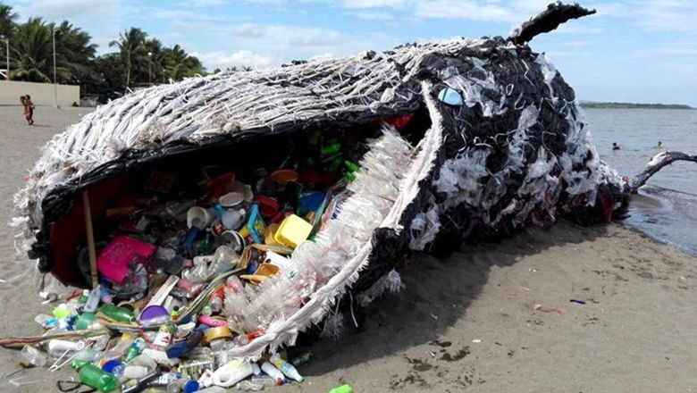 deadwhale-plastic