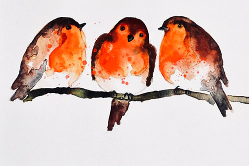 Watercolour Workshop 'Robins' - Winter Weekend