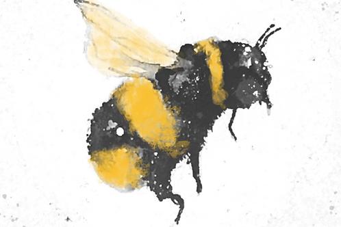 Bumble Bee Watercolour & Metallic Ink Workshop