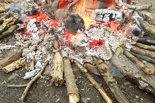 Wild Weekend (Camping)