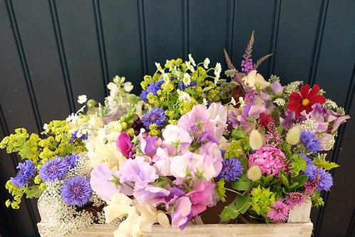 Grow Your Own Cut Flowers - Autumn Masterclass