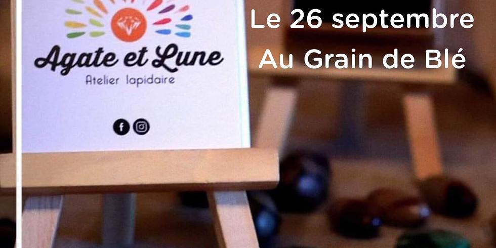Rencontre avec Céline Lapidaire