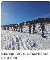 47 Nibologia TDE2 2020.png