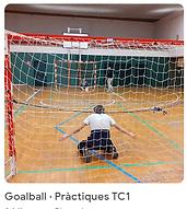 46 Goalball TC1.png