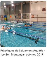39 pract Salv Aquat 2019.png
