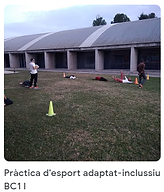 31 pract Esport Adapt Incl BC1.png