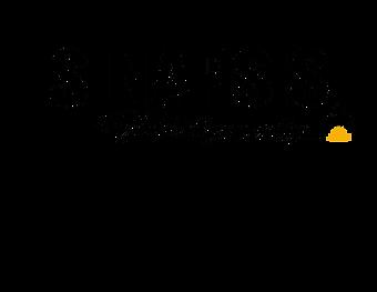 Logo-Sinapsis-camara-Naranja-_edited.png