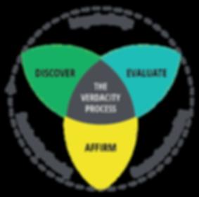 Diagram of the Verdacity Process