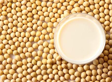 חלב סויה אורגני ביתי טעים, קל!