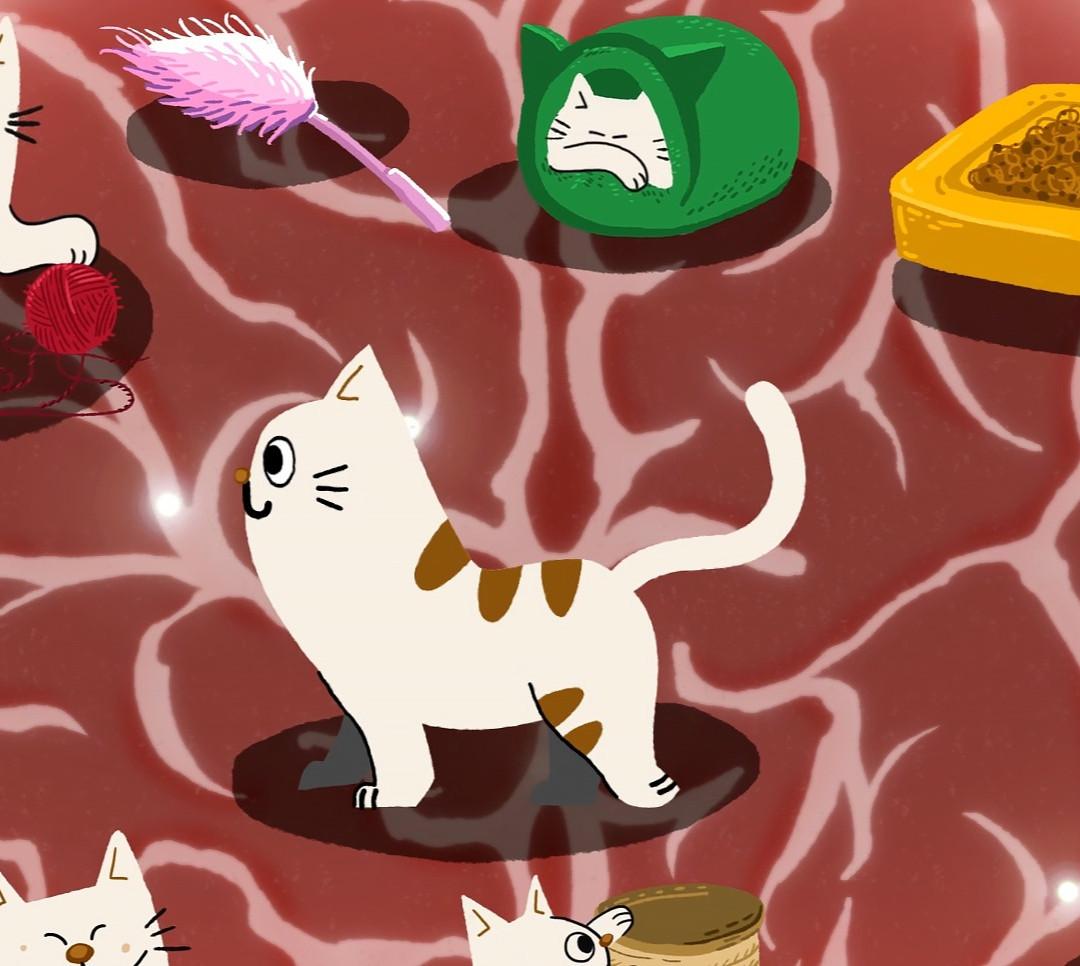 Cat Experiment