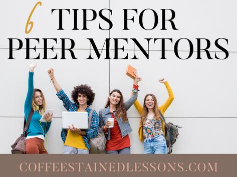 Utilizing Peer Mentors