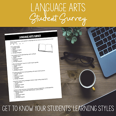 high school language arts student survey for learning styles