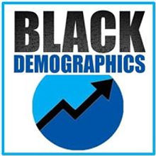 Black Demographics Logo