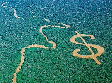 environmental economics.jpg