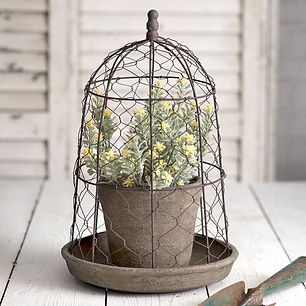 chicken-wire-cloche-with-terra-cotta-pot