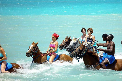 Horseback Ride and Swim