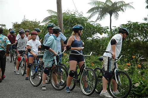 Blue Mountain Bike Tour