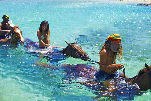 Horseback Riding Combo