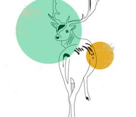 STOP! Deer in the Headlights!