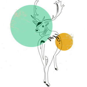 Deer Album Cover