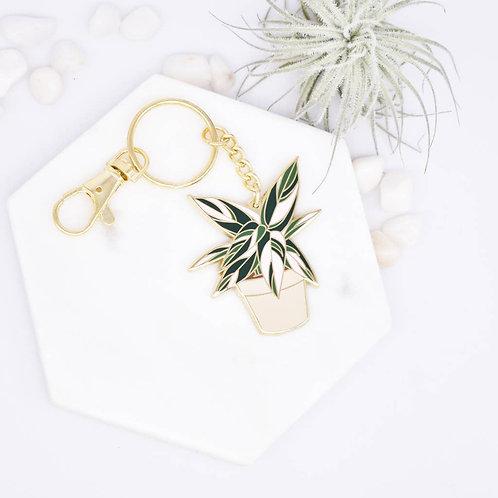 Stromanthe Triostar Keychain