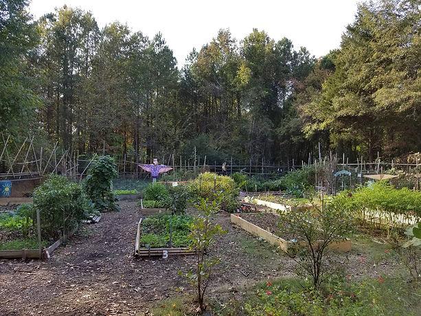 Garden_Mville.jpg
