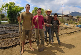 Volunteers Working in Tree Nursery Chico Mendes