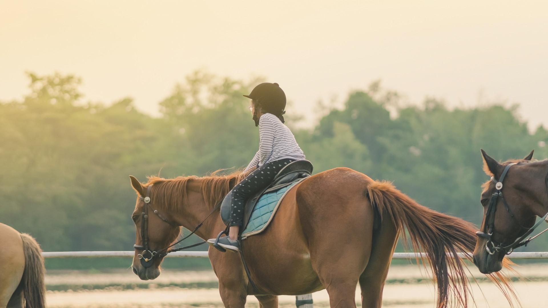 HorsesWithKids.jpg