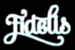 FDLS-wordmark-lowres-web-trnsprnt.png