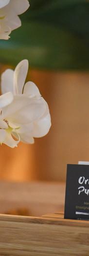 L'arbre de Vie - Salon massage - Orchydée et ambiance zen