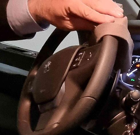 Steering Wheel Cleaning.jpg