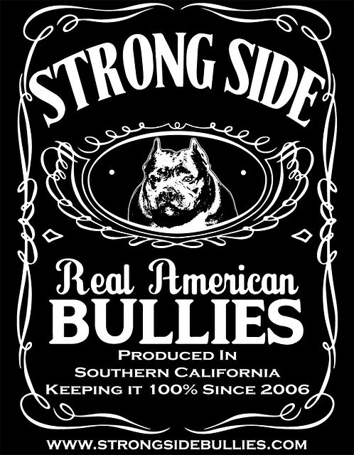 American Bully Breeders