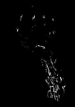 Gaelle-vectorisé-01.png