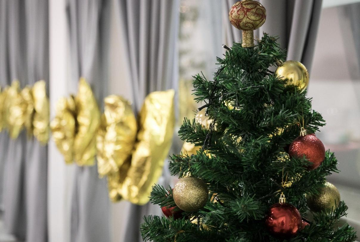 Cena di Natale FisiorehabG_7252