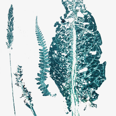 bristol-print-collective-botanical-works